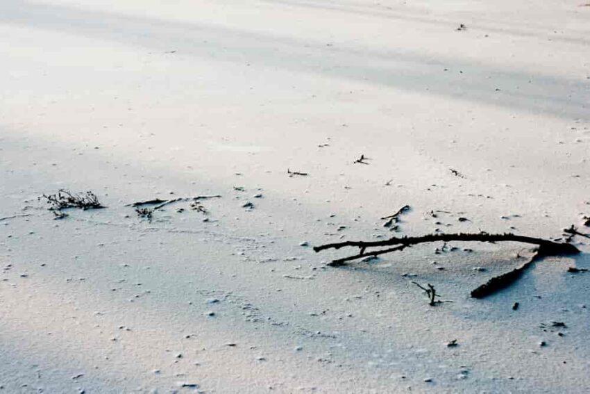 Patyki w piasku
